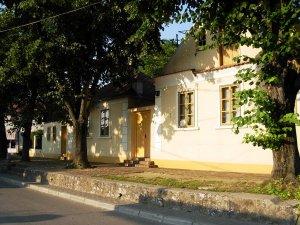 Zmajev muzej u Sremskoj Kamenici