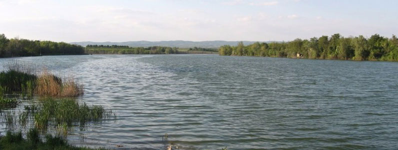 Jezero Borkovac kod rume