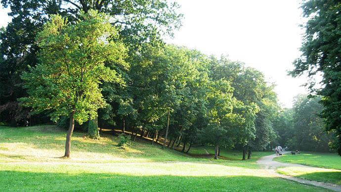 kamenicki park u novom sadu
